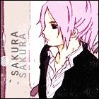 `sakura