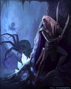 Охотник на пауков