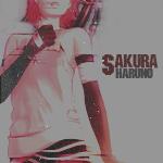 ~sakura