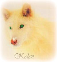 Келен