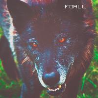 Foall.