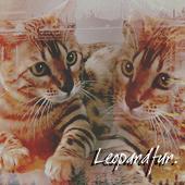 Leopardfur.