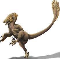 Дима-дромеозаврёнок
