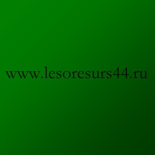 saburovem81