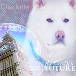 Charlotte [х]
