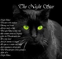 Ночная Звезда