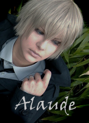 Alaude