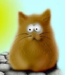 big_cat1969