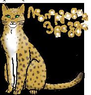 Леопардная Звезда