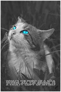 Синичка