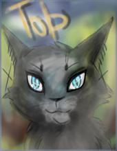 Призрак Кота
