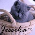 Джессика