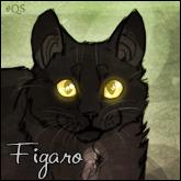 Figaro.