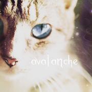 .avalanche