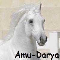 Amu-Dar'ya
