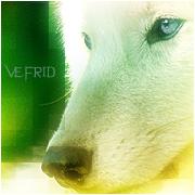 Вефрид