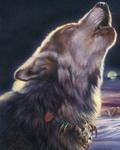 Anna Wolf/Snape