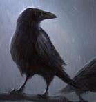 Слизеринская птичка