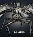 Гигарекс