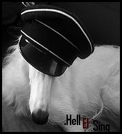 Hell El`Sing