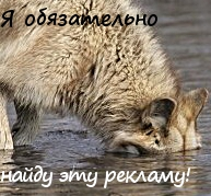 Wolf-PR