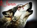 Di_Forever