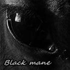Black mane