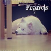 Francis.