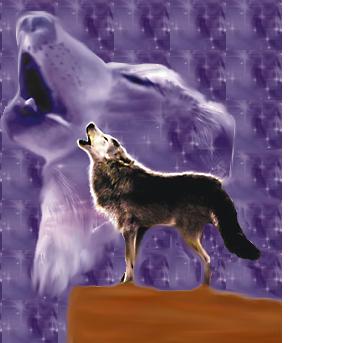 Wolf's Spirit