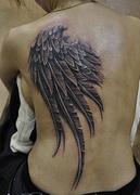 Черное крыло