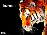 Тигринка