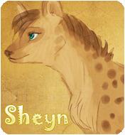 Sheyn