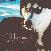 ;Shvips