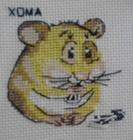 MasterXOMA (Евгений)