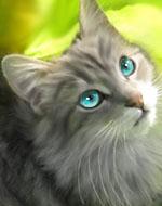 Голубичка