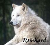 Райнхард
