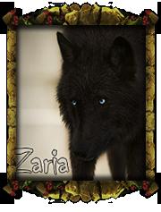 Зария