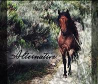 » Alternative `