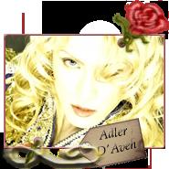 Adler D'Aveh