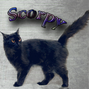 Скорпи