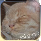 Джонни