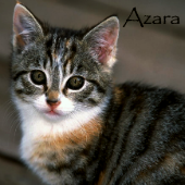 Азара