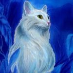 Кошка4