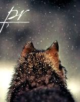 PR-wolf
