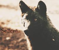 Sellenia