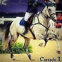 Corrado I