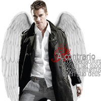Angel [x]