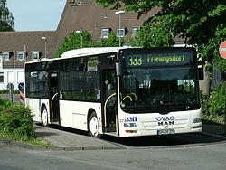 Gibon911