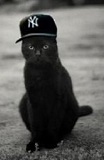 BlackyCat