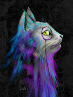 Вечный Кот